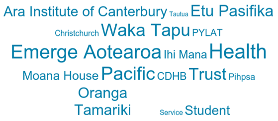GPS Christchurch 2017 word cloud.