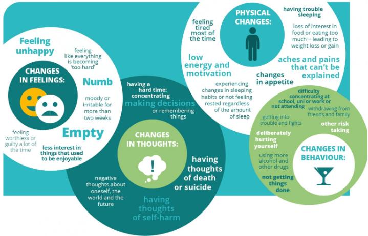 Depression Factsheet – available in English, Māori, Samoan and Tongan languages